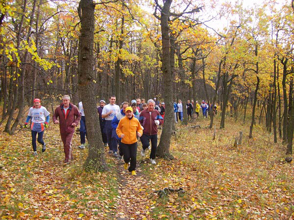 Пробежка по лесу