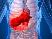 АЛТ в Анализе Крови Повышен: Вызывают 3 Заболевания и 6 Причин