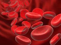 Эритроциты в кровяном русле