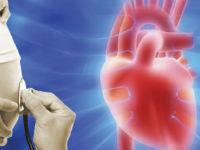 Сердце плода