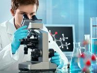Врач-лаборант определяет уровень мочевины