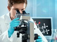 Лаборант определяет уровень мочевины в крови