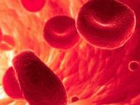 Чем и как разжижить кровь в организме человека: лекарства, растения