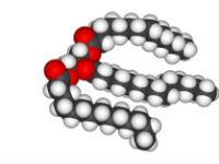 Структура триглицерида