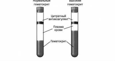 Гематокрит крови