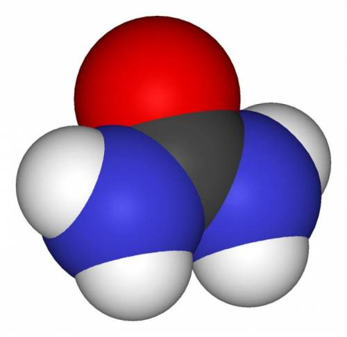 Молекула мочевины