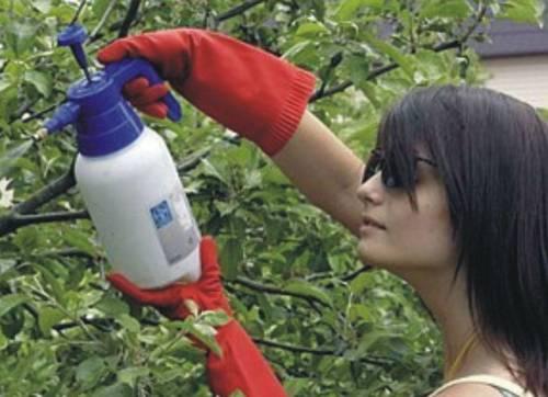 Химикаты для огорода