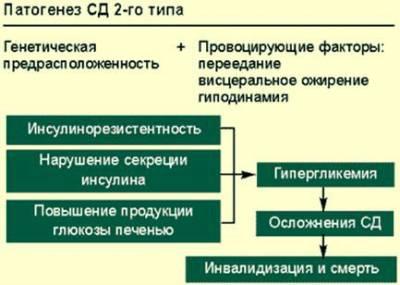 Патогенез СД 2 типа