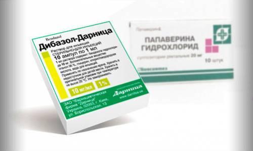 papaverine-instprimukl-7-500x299