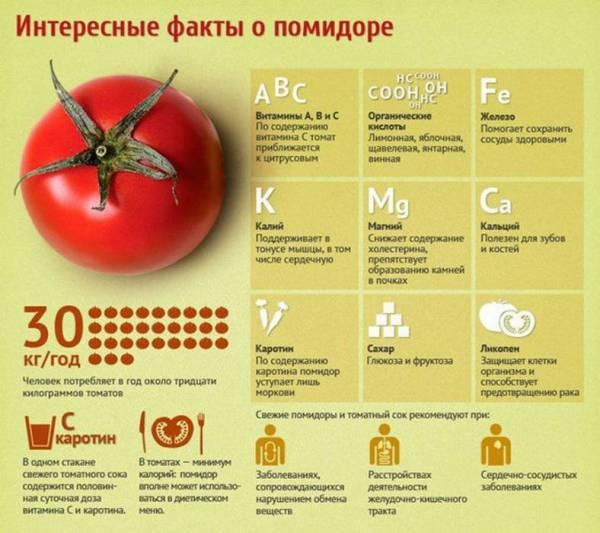 Факты о помидорах